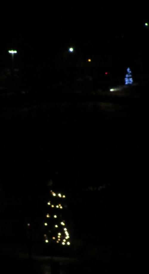 Weihnachstbäume
