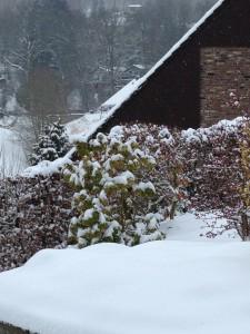 2013_02_24 Winter