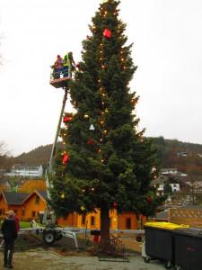 2014_11_29 Weihnachtsbaum 3
