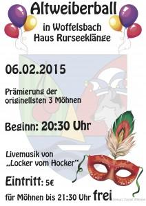 2015_01_12 Plakat Moehnenball