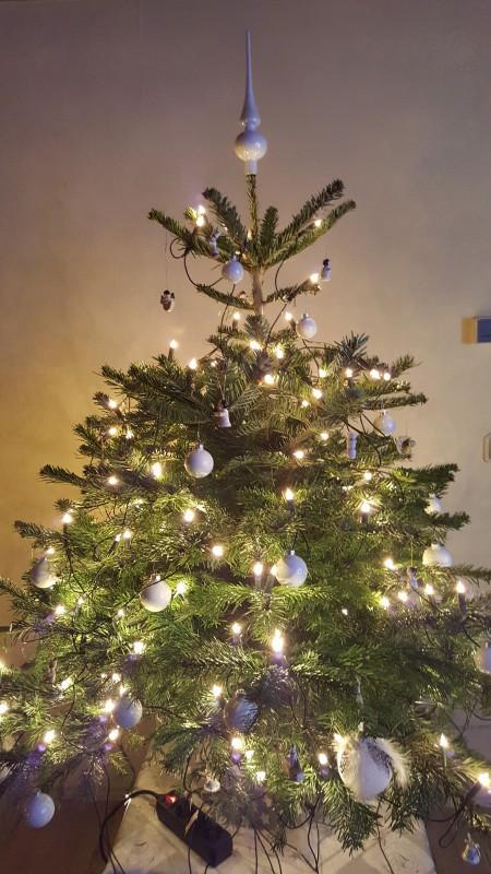 2015_12_22 Weihnachtsbaum