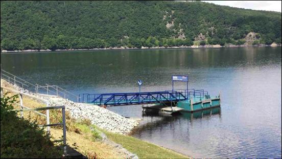 2016_07_18 Grasbueschel auf dem See